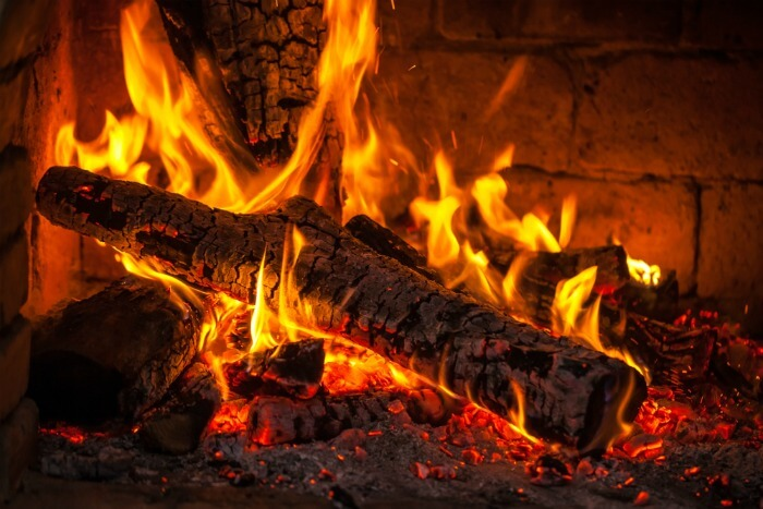 logs burning in a wood burning stove