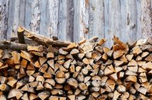 Stack of seasoned firewood against fence