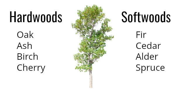 List of hardwood and softwood trees