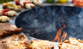 Plancha Grills Buying Guide